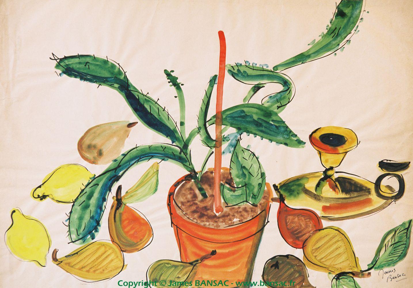 La plante grasse - 1945